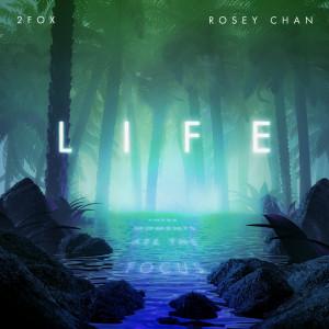 Album Life (Edit) from 2Fox