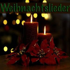 收聽Peter Svensson的Oh Christmas Tree歌詞歌曲