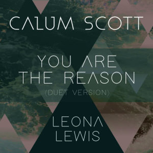 Listen to You Are The Reason (Duet Version) song with lyrics from Calum Scott
