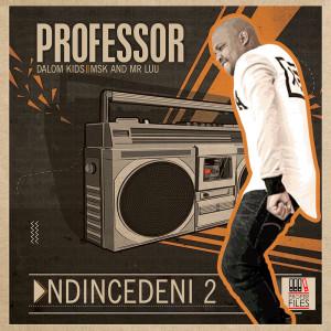 Album Ndincedeni 2 from Mr Luu & MSK