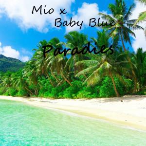 Album Paradies (Explicit) from Baby Blue