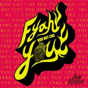 Album Fyah Nuh Hot Like You from New Kingston