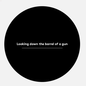 Looking Down The Barrel Of A Gun 2004 Beastie Boys