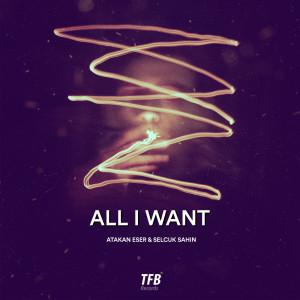 Album All I Want from Selçuk Şahin