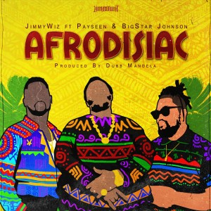 Listen to Afrodisiac song with lyrics from Payseen