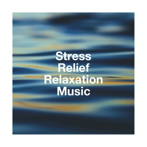Album Stress Relief Relaxation Music from Celtic Music for Relaxation