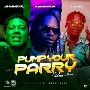 Album Pump Your Parry (Remix) (Explicit) from Naira Marley