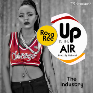 Album Up In The Air from Rosa Ree