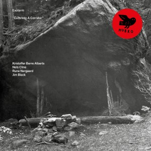 Album First Light from Nels Cline