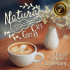 Café Lounge Resort Album Natural Cafe Guitar ~early Summer Breeze~ Mp3 Download