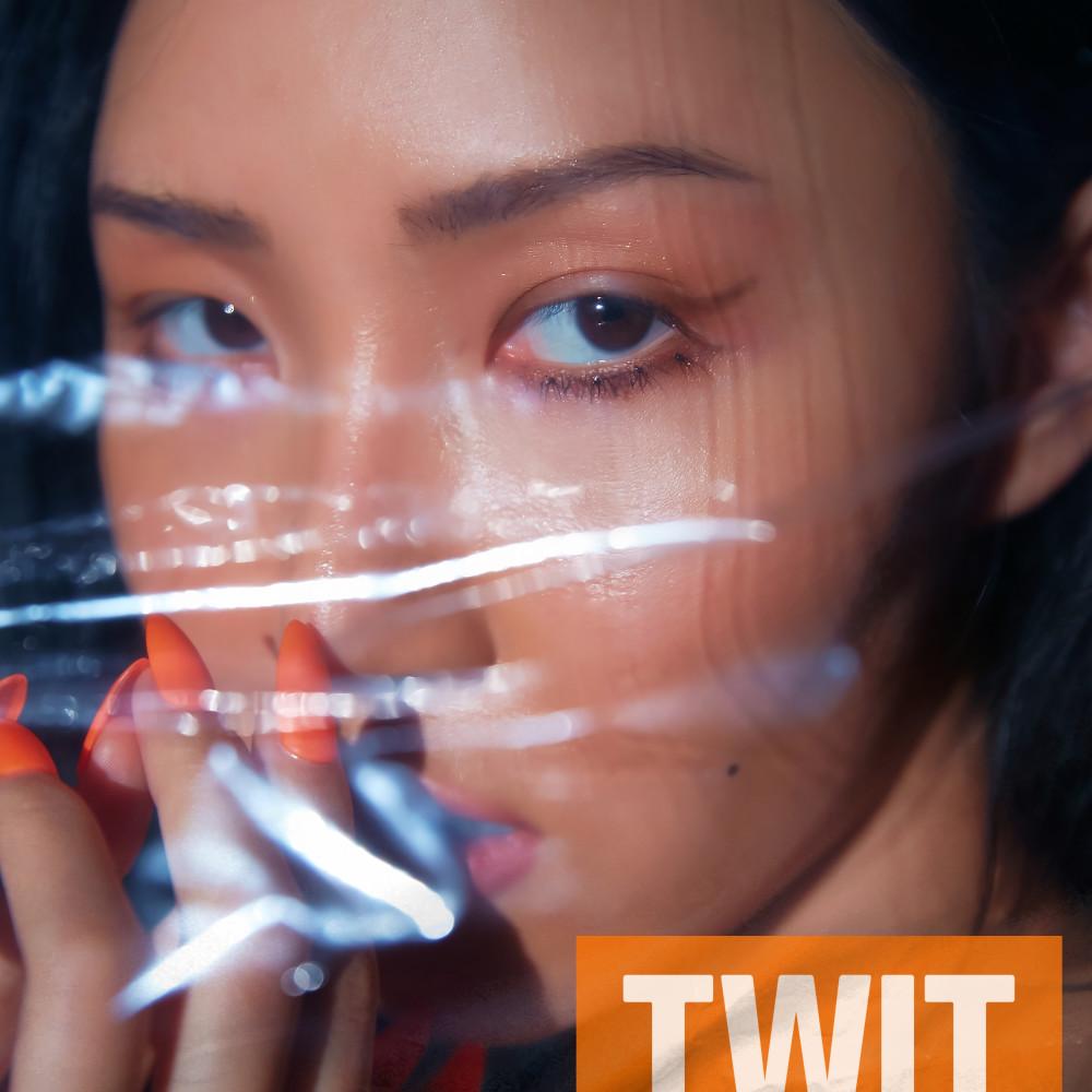TWIT (Instrumental) 2019 화사