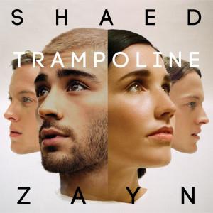 SHAED的專輯Trampoline