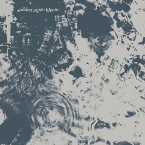Album Sudden Algae Bloom from Floridomi