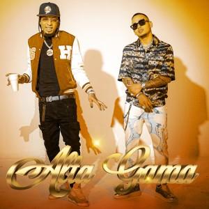 Album Alta Gama (Remix) from Ozuna