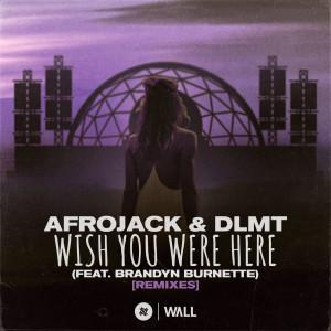 Afrojack的專輯Wish You Were Here (feat. Brandyn Burnette) [Remixes]