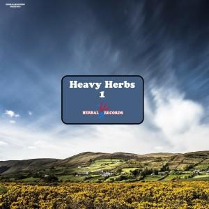 Album Heavy Herbs, Vol. 1 from AudioGasmic SoundZ