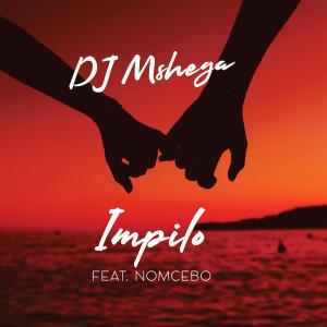 Album Impilo from DJ Mshega