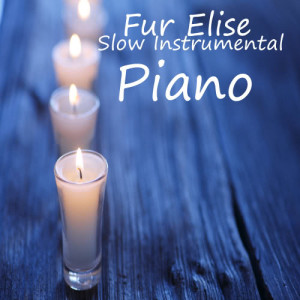 Album Slow Great Instrumental Songs On Piano: Fur Elise from Instrumental Music Group