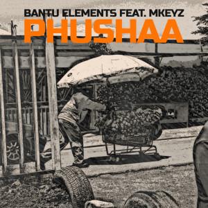Album Pushaa from Bantu Elements