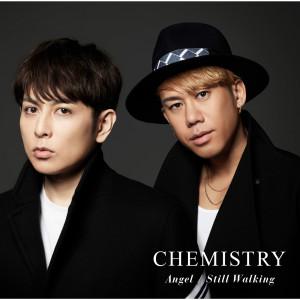 化学超男子的專輯Angel