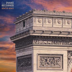 Recognize dari DJ Snake