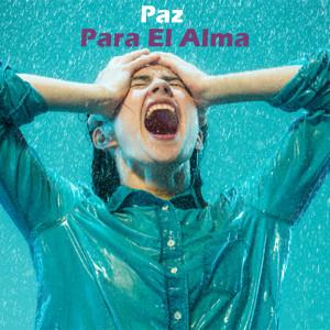 Album Paz Para El Alma from Musica Relajante