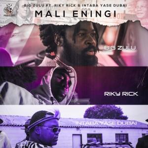 Album Mali Eningi from Riky Rick