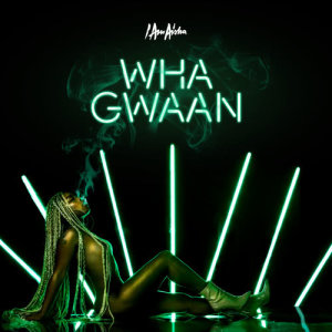 Album Wha Gwaan from I Am Aisha