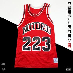 Album 223 (Explicit) from Nelly Nelz