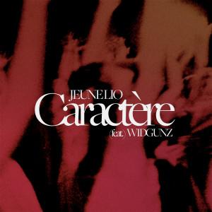 Album Caractère from Widgunz