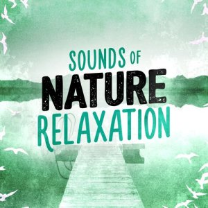 Sounds of Nature Relaxation