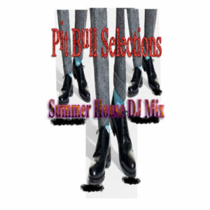 Album Pit Bull Selections from DJ Pit Bull