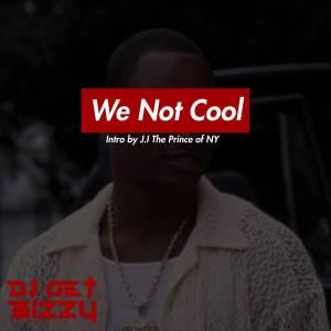 Album We Not Cool (Explicit) from DJ Get Bizzy