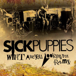 Album What Are You Looking For from Sick Puppies
