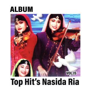 Top Hit's, Vol. 15