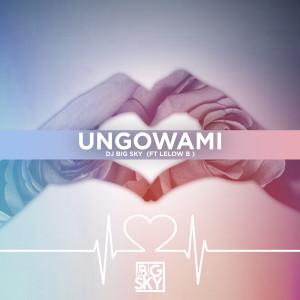 Album Ungowami (Edit) from DJ Big Sky
