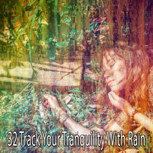 Album 32 Track Your Tranquility with Rain from Rain Sounds & White Noise