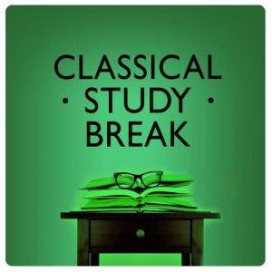 Study Music Group的專輯Classical Study Break