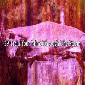 Rain Sounds的專輯29 Train Your Mind Through the Storm