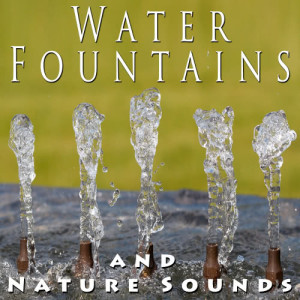 Zen Meditations from a Sleeping Buddha的專輯Water Fountains and Nature Sounds