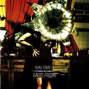 Album Shag Tobacco from Gavin Friday