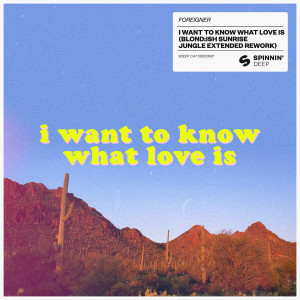 Foreigner的專輯I Want To Know What Love Is (BLOND:ISH Sunrise Jungle Extended Rework)