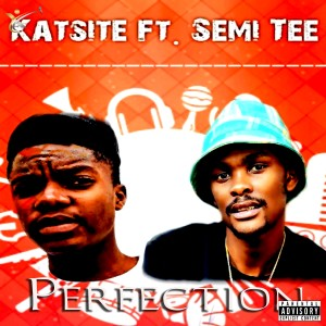Album Perfection from Semi Tee