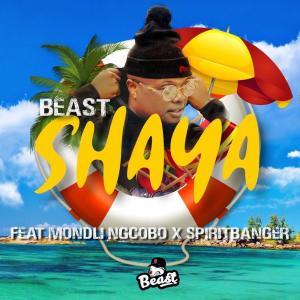 Album Shaya Single from Beast