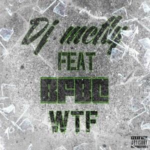 Album WTF from DJ McFly