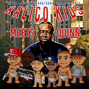 Kalico Kids Meets Quinn