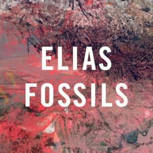 Fossils 2012 Elias