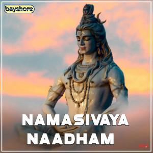 Album Namasivaya Naadham from Deva