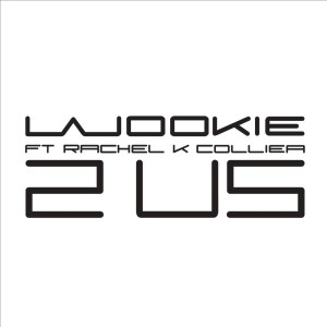 Album 2 Us from Wookie