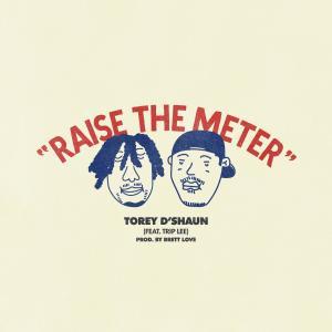 Album Raise the Meter from Trip Lee